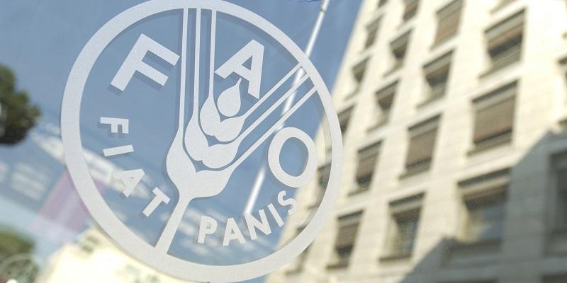 И миграция – в придаток: Участники конференции ФАО посетят воронежские сельхозпредприятия