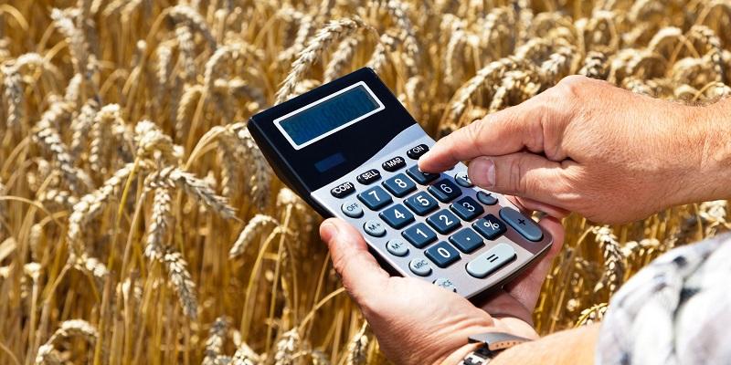 С уклоном в АПК: «МИнБанк» поддержит новые проекты воронежских аграриев льготными кредитами