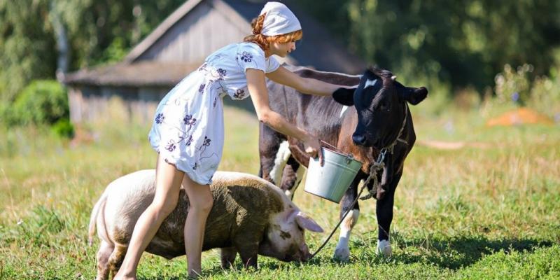 Вы – к нам, мы – к вам!: Власти Воронежской области и Баварии задумались о развитии аграрного туризма