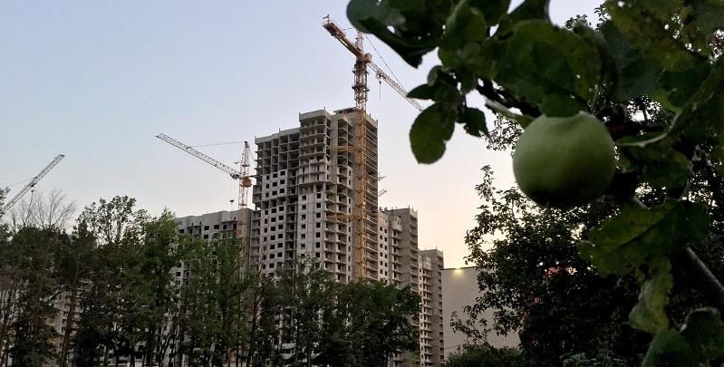 Вернули взад: Прокуратура все же добилась возврата в госсобственность второго участка под яблоневыми садами в Воронеже