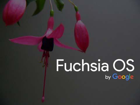 ОС Fuchsia скоро заменит Android, Wear OS и Chrome OS?
