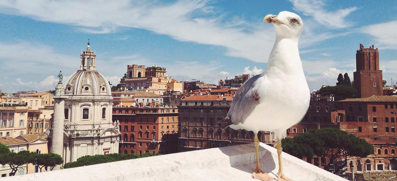 Все разновидности фотосессий в Риме
