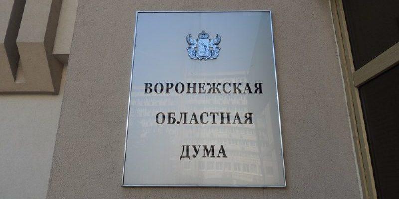 Снова с «минусом»: Депутаты облдумы приняли в первом чтении дефицитный бюджет на 2019 г.