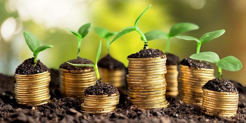 Поощрили за экономику: Воронежская область стала обладателем гранта на 714,8 млн руб. от Москвы