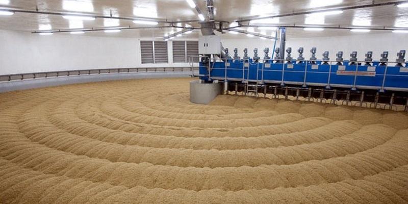 Войти в тренд: В Воронежской области могут построить предприятие по переработке зерна в крахмал