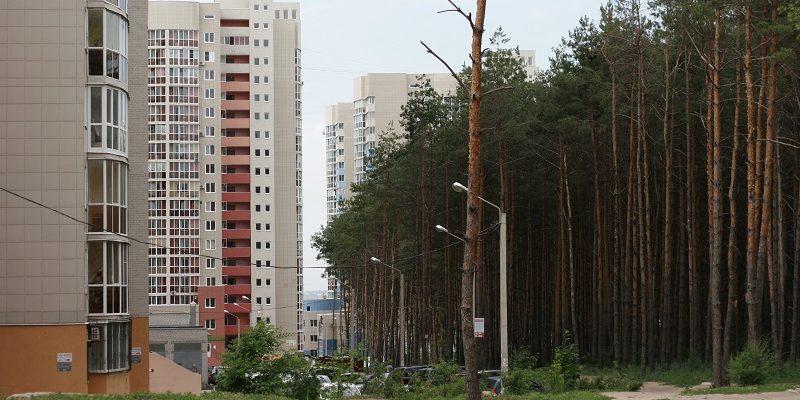 «Аксиома» может получить участки в Воронеже взамен «Северного леса»