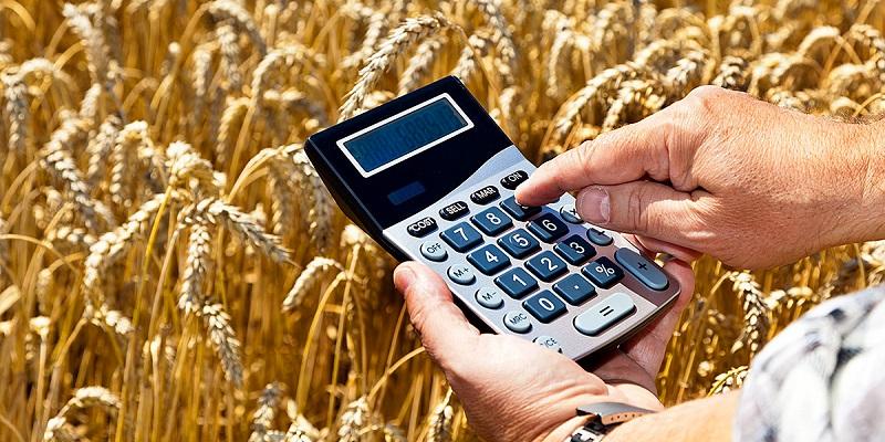 На поддержку воронежских аграриев за год выделят 7,7 млрд руб.