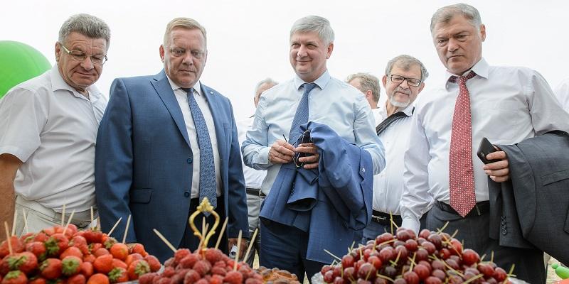 На развитие воронежских сел в 2019 г. направят около 8 млрд руб.