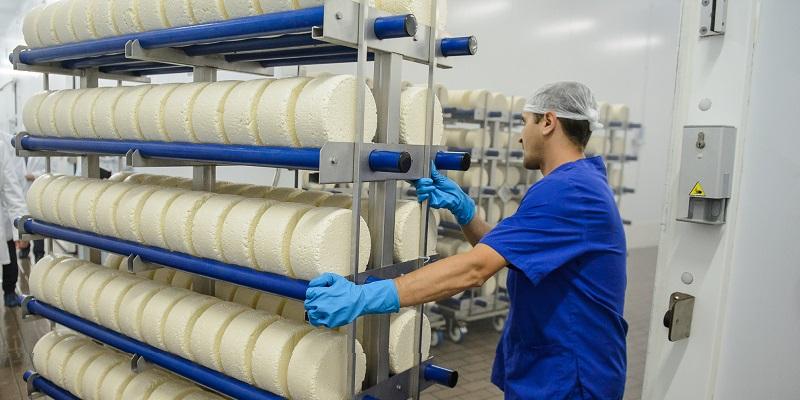 Новый сыродельный завод в Воронежской области откроют в 2020 г.