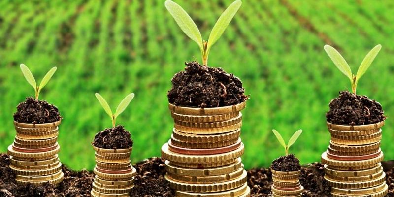 В Воронежской области инвесторам сдадут землю без торгов