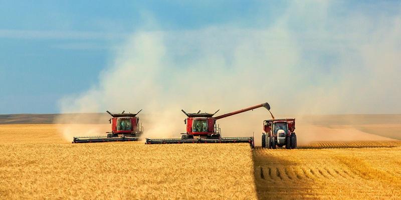 В Воронежской области собрали третий миллион тонн зерна