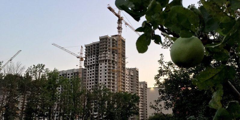 В Воронеже спроектируют будущую застройку яблоневых садов
