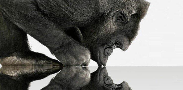 Corning представила прочное стекло Gorilla Glass Victus